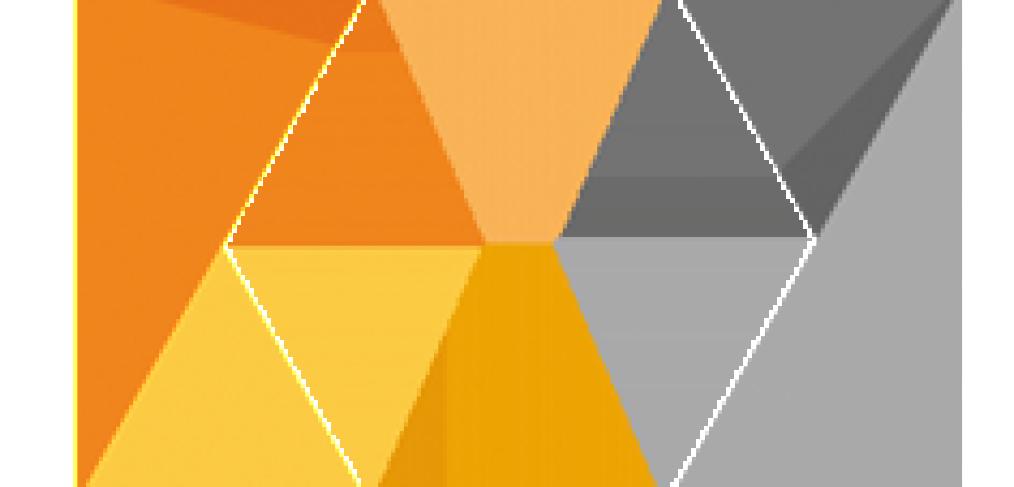 Nik Software Logo